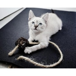 Tapis Yoga Cat